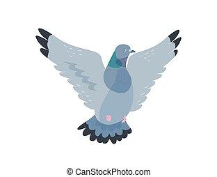 cidade, bird., fauna, fauna, domesticated, voando,...
