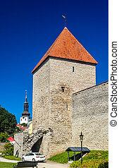 cidade, estónia, solteirona, -, paredes, tallinn, torre