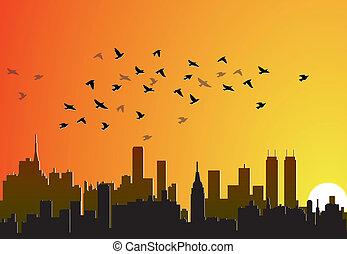 cidade, fundo, com, voando, pássaros