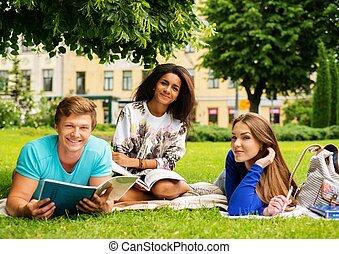 cidade, multi, grupo, estudantes, parque, étnico