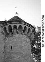 cidade, parede, torre, tallinn