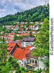 cidade, -, schwarzwald, im, alemanha, triberg, vista