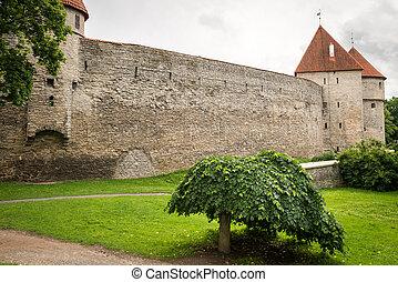 cidade velha, estónia, parede, tallinn, torre, fortaleza