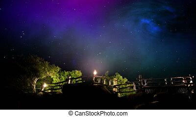 ciel, arbres, nuit