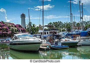 ciel bleu, amarré, entouré, flowers., yachts., afternoon., nuages, contre, thailand., voiliers, maison, arbres., paume, phare