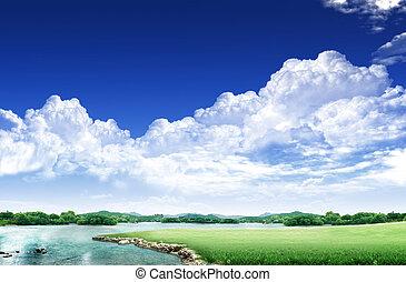 ciel bleu, champ, blanc vert, nuage