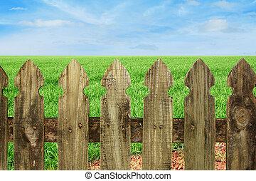 ciel bleu, herbe, barrière