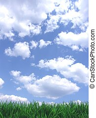 ciel bleu, herbe verte