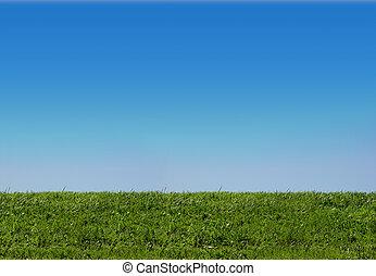 ciel, et, herbe