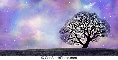 ciel, grand, chêne, magique, nuit