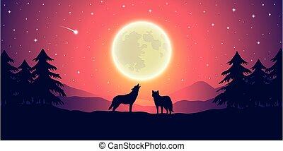 ciel, lune, paysage, deux, loups, pourpre, montagne, entiers, étoilé