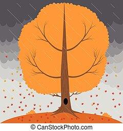ciel orageux, feuilles, arbre, pluie, automne, fond, tomber