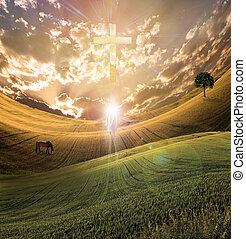 ciel, radiates, croix, lumière