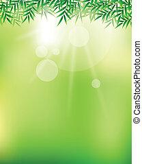 ciel vert, beauté, fond