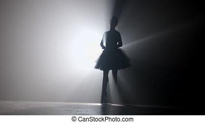 cielna, 4k, chodząc, floodlights, czarnoskóry, stage., dym, white., balerina, strumienice, piękny, balet, tło., tutu, młody, taniec, dziewczyna, profesjonalny, strój