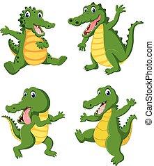 cielna, różny, crocodilies, przedstawianie, zbiór