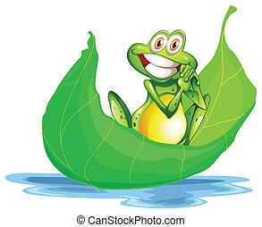 cielna, uśmiechanie się, liść, żaba