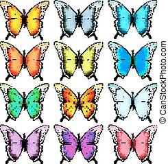 cielna, wektor, zbiór, barwny, butterflies.