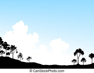 cielo, albero