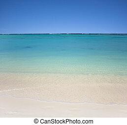 cielo azul, claro, playa, aguas