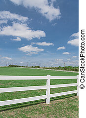 cielo azul, ennis, tejas, línea, cerca blanca, horizontal,...