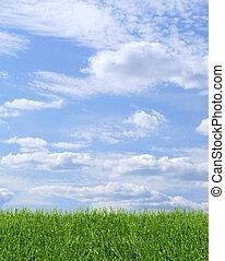 cielo azul, pasto o césped, verde