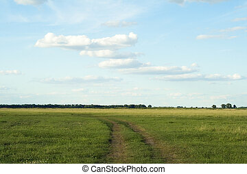cielo azul, profundo, horizonte, desierto, camino