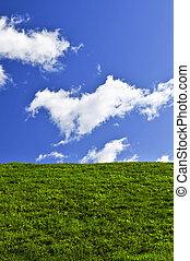 cielo azul, y, campo verde