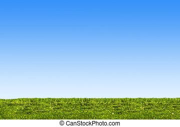 cielo azul, y, pasto o césped, plano de fondo