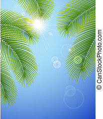 cielo blu, palma, branches., soleggiato