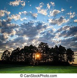 cielo, campo, sol, árboles, dramático, por, nublado, verde, ocaso, Brillar