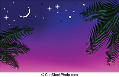 cielo de la noche, y, un, palma, branch.