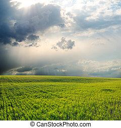 cielo drammatico, sopra, campo