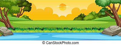 cielo giallo, scena, vista, o, campagna, natura, foresta, sponda, orizzonte, paesaggio, tramonto