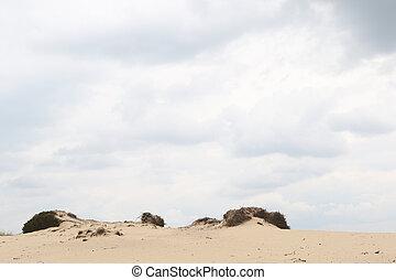 cielo nublado, encima, un, arenoso, duna, borde