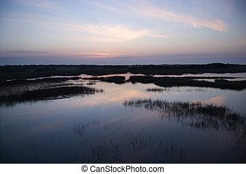 cielo, reflejar, en, marsh.