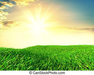 cielo, y, pasto o césped, plano de fondo, fresco, verde, campos