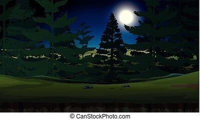 ciemny, las, noc
