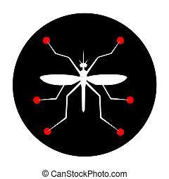 ciencia, insecto