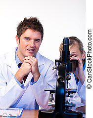 científicos, trabajo junto, en, un, laboratorio