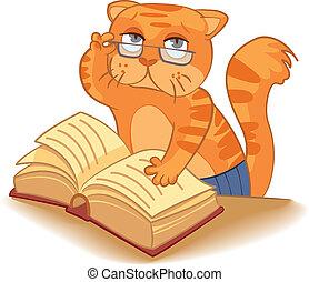 cientista, -, gato