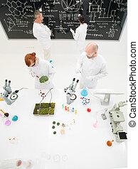 cientistas, trabalhando, em, um, laboratório