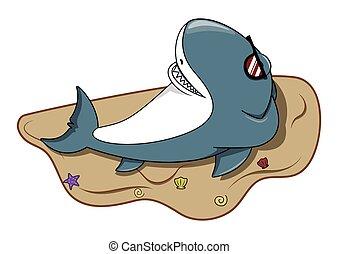 cieszyć się, rekin, plaża
