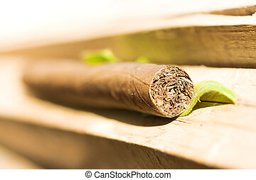 Cigar on a bright wooden background.