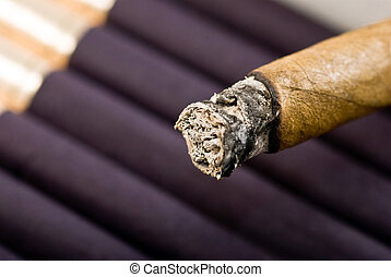 cigar with ash macro