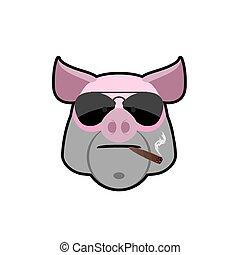 cigarette., anteojos, enojado, boar., cabeza, bully., logotipo, granja, animal., cerdo, animal