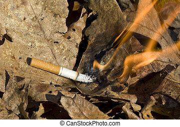cigarette burning leaves - cigarette lighting leaves on fire