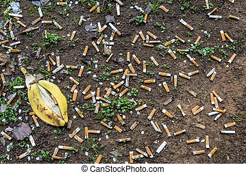 Horizontal shot of Cigarette Butts Littering The Ground. There is also a yellow banana peel.