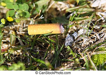 cigarette fire hazard on forest grass macro detail - ...