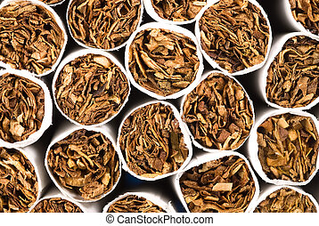 Cigarette tobacco - A group of cigarette tips showing the ...